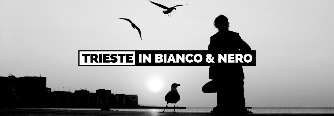 Black & White Trieste: authors, book and exhibit